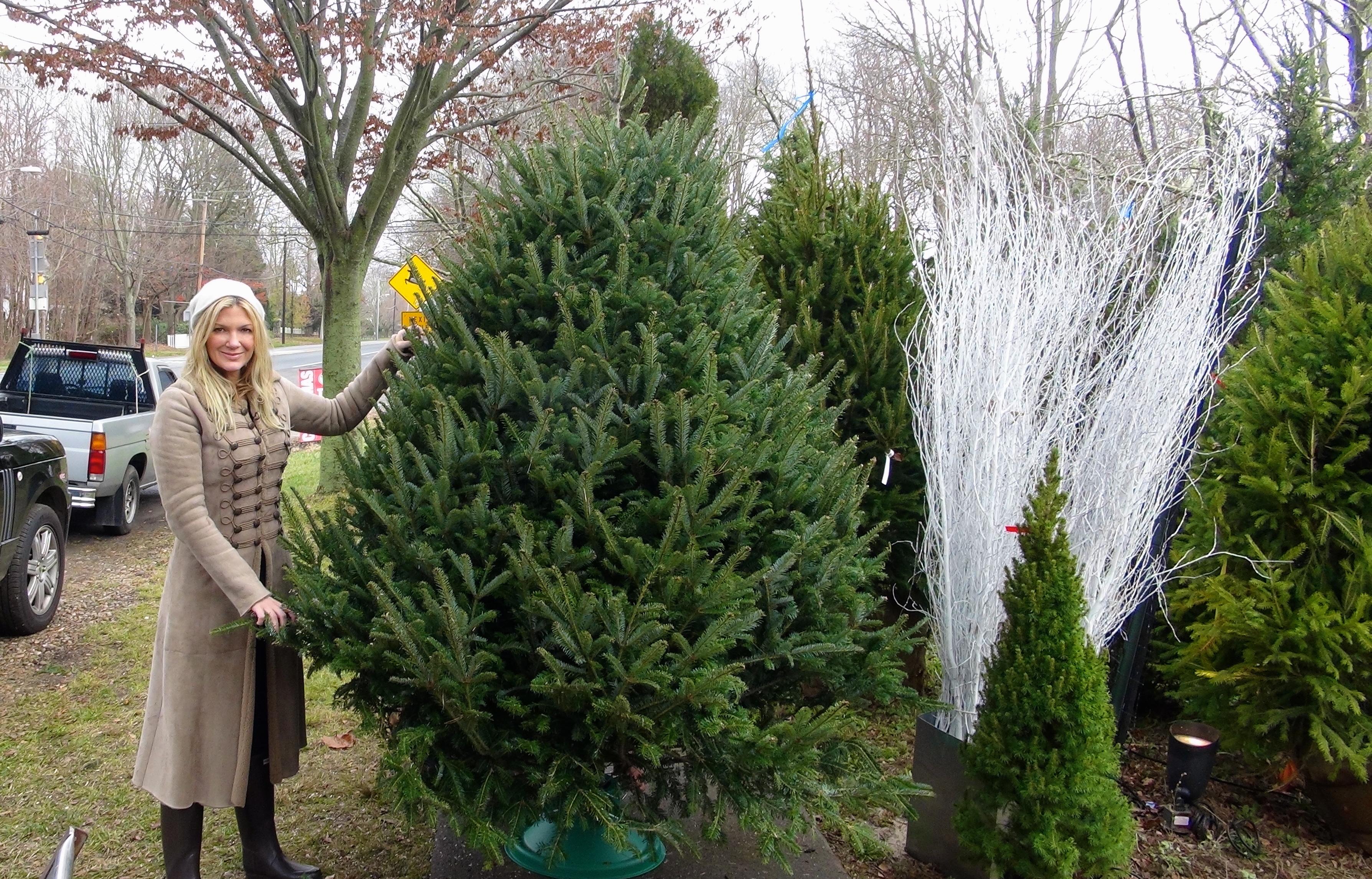 KDHamptons BEFORE & AFTER Christmas Tree Reveal! - KDHamptons