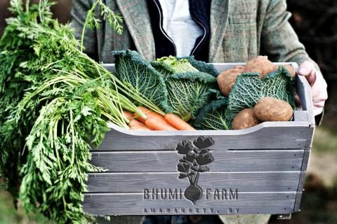 Bhumi Farm veggie crate