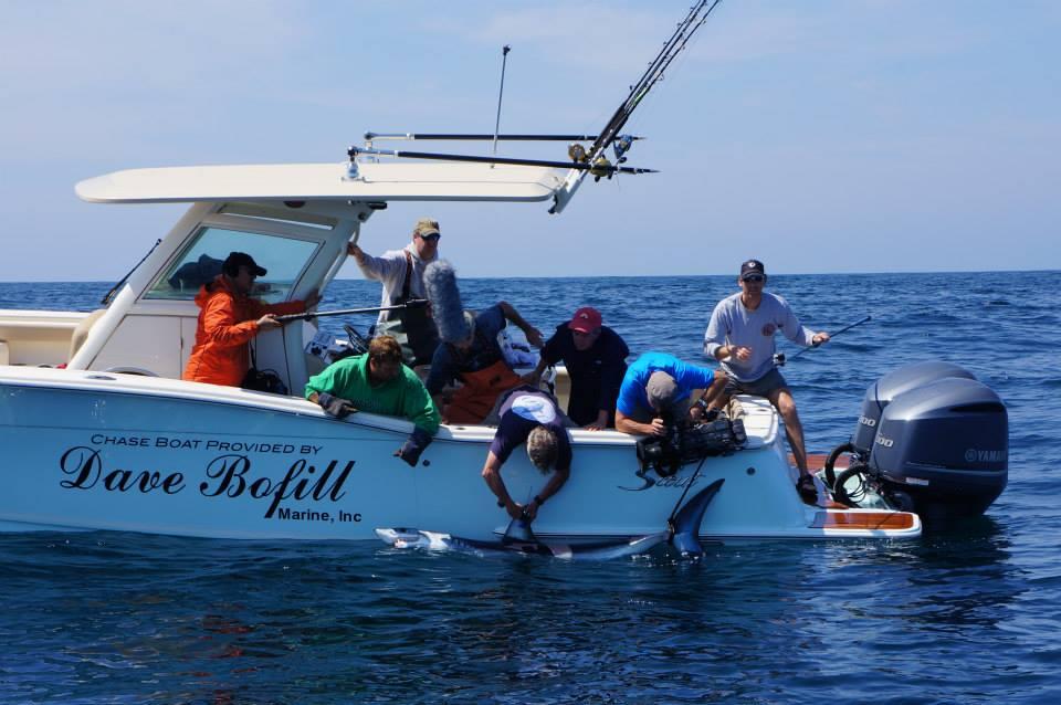 Kdhamptons save the date register now for the shark 39 s eye for Montauk shark fishing