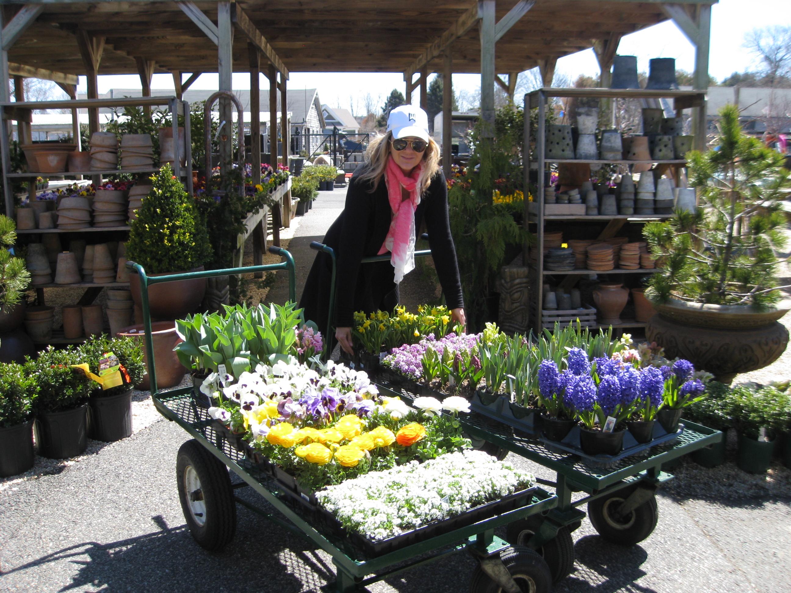 New kdhamptons garden diary are you a big pot lover kdhamptons for Lynch s garden center