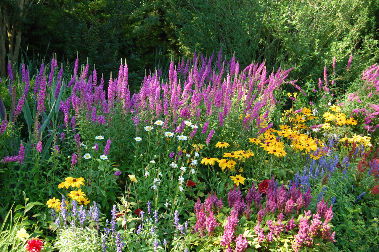 New Book Celebrates 28 Years Of Beautiful Hamptons Gardens Bloom